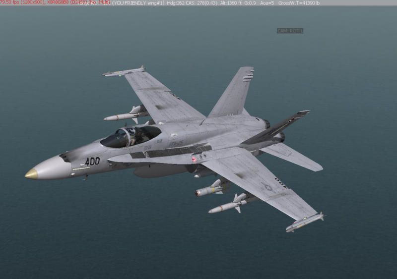 Another Hornet sim, but more importantly, another sim seem to be coming.